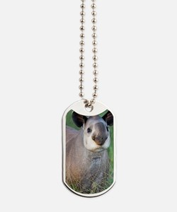 Brazilian tapir Dog Tags