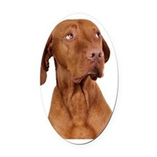 sorry dog Oval Car Magnet