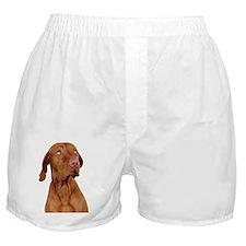 sorry dog Boxer Shorts