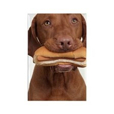 Hot dog dog Rectangle Magnet