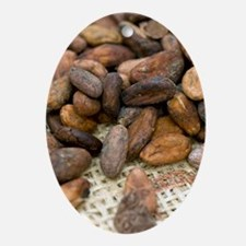 Cocoa beans Oval Ornament