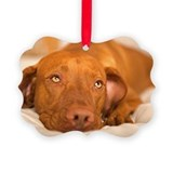 Vizsla Picture Frame Ornaments