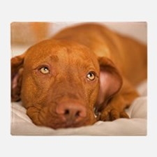 dreamy dog Throw Blanket