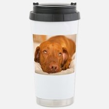 dreamy dog Stainless Steel Travel Mug
