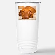 dreamy dog Travel Mug