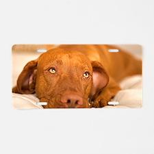 dreamy dog Aluminum License Plate