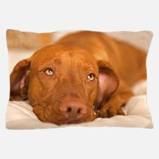 dreamy dog Pillow Case
