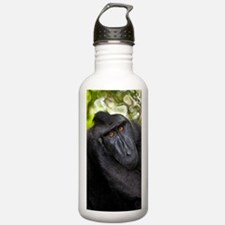 Crested black macaque Water Bottle