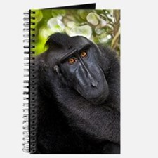 Crested black macaque Journal