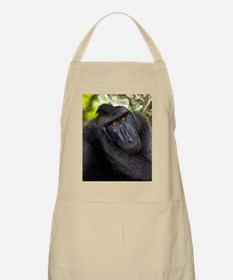 Crested black macaque Apron