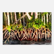 Mangroves Postcards (Package of 8)