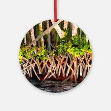 Mangroves Round Ornament