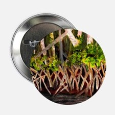 """Mangroves 2.25"""" Button"""