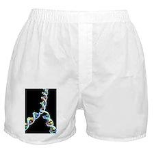 DNA replication Boxer Shorts