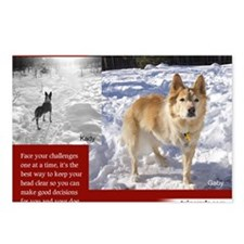 Tripawds Three Legged Dog Postcards (Package of 8)