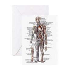Anatomy of the Human Body Greeting Card
