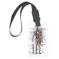 Anatomy of the Human Body Luggage Tag