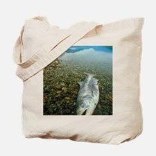 A dead chinook salmon seen shortly after  Tote Bag