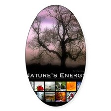 2013 Natures Energy Calendar Decal