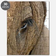African elephant's eye Puzzle