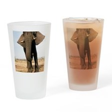 African elephant Drinking Glass