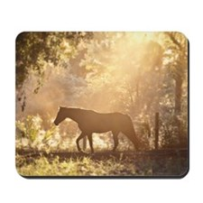 Horse underneath canopy of trees in fore Mousepad