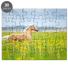 Horse running in field. Puzzle