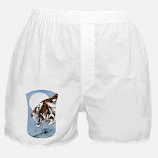NOOKDTm Tiger Moon Boxer Shorts
