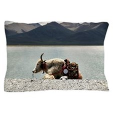 Yak resting Pillow Case