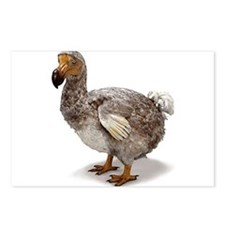 Dodo Statue Postcards (Package of 8)
