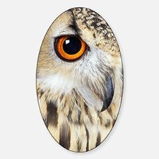 Bengalese eagle owl Decal