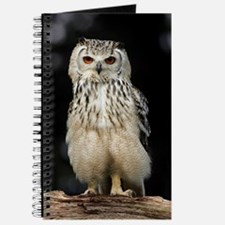 Bengalese eagle owl Journal