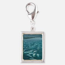 Beluga whales moulting Silver Portrait Charm
