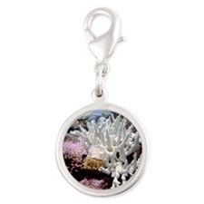 Bleached coral Silver Round Charm