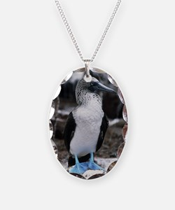 Blue-footed booby Necklace Oval Charm