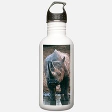 Black rhinoceros drink Water Bottle