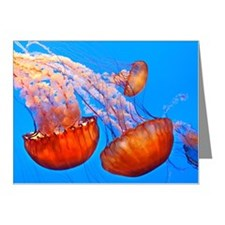 Jelly fish at Monterey Aquar Note Cards (Pk of 20)