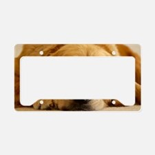 Golden Retriever License Plate Holder