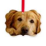 Golden retriever Picture Frame Ornaments