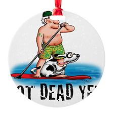 Paddle Board Grampy Ornament