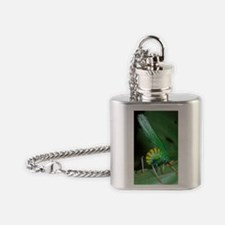 Bush cricket threat display Flask Necklace