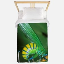 Bush cricket threat display Twin Duvet