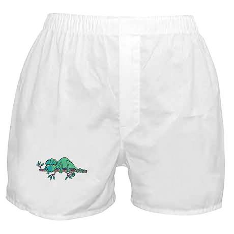 Sleepy Lizard Boxer Shorts