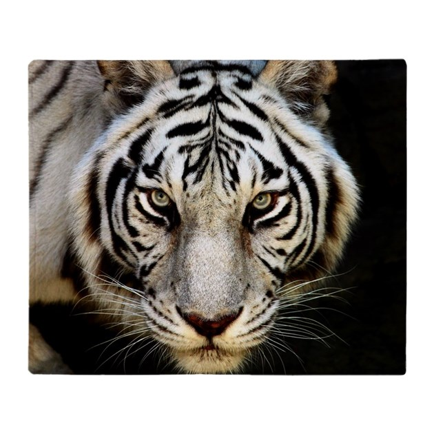Tiger Throw Blanket By ADMIN_CP3638526