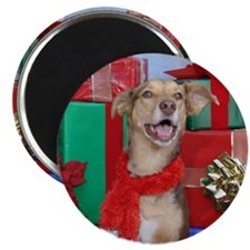 Dog Holiday Ornament Magnet