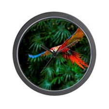 Fight of Macaw Wall Clock