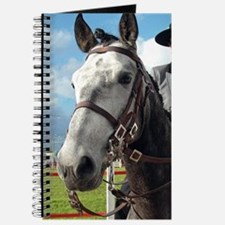 Pure breed horse Journal