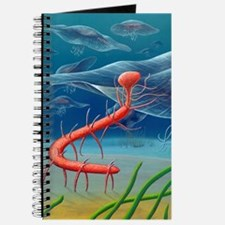 Cambrian invertebrate, artwork Journal