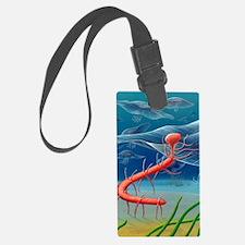 Cambrian invertebrate, artwork Luggage Tag