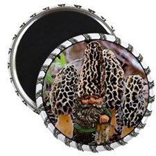 """morel and gnome art 2.25"""" Magnet (10 pack)"""